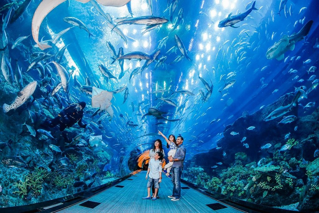 Dubay Akvarium